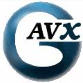 vickiep@gavx.com