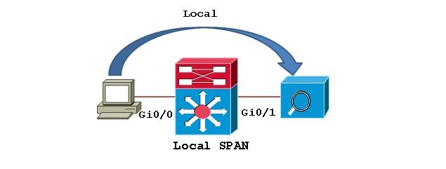 SPAN1.jpg