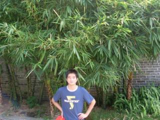 huangpo2005