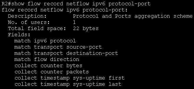 show flow record netflow ipv6 protocol-port.JPG