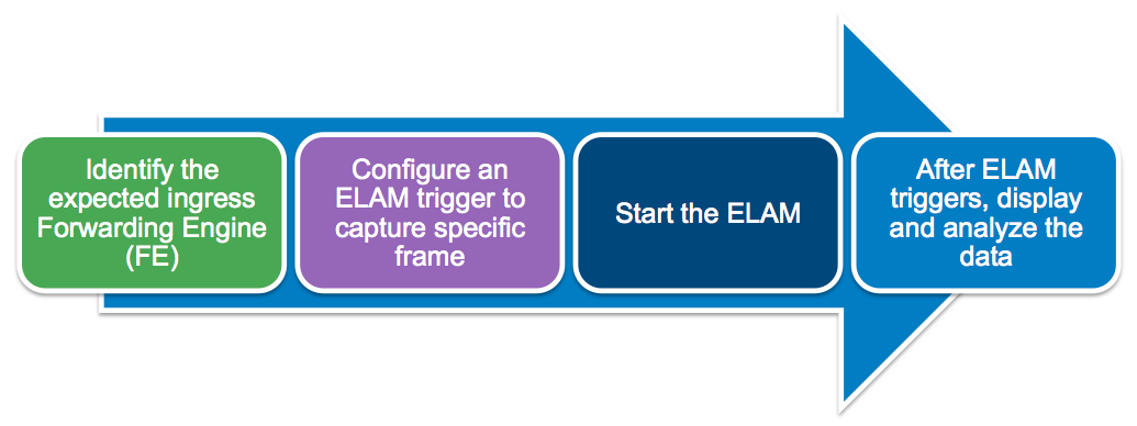 elam_workflow.png