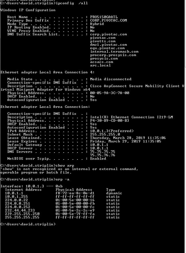 ipconfig_working.PNG