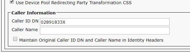 caller info.JPG